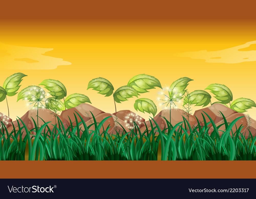 Grasses near the big rocks vector | Price: 1 Credit (USD $1)