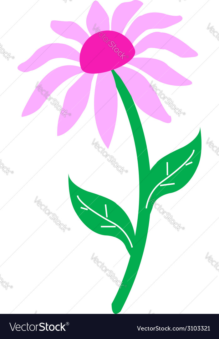 Sunflower isolated vector | Price: 1 Credit (USD $1)