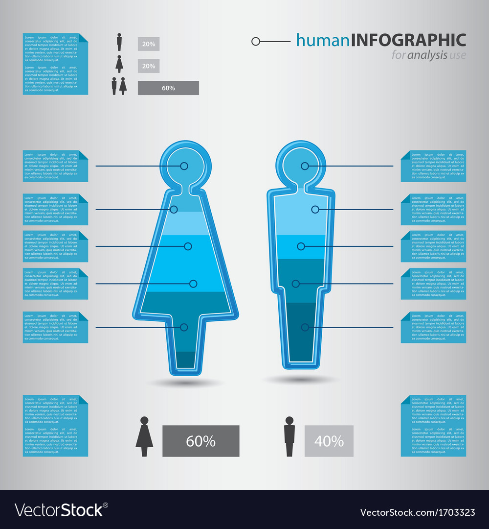 Modern human man and woman figurine info graphic vector | Price: 1 Credit (USD $1)