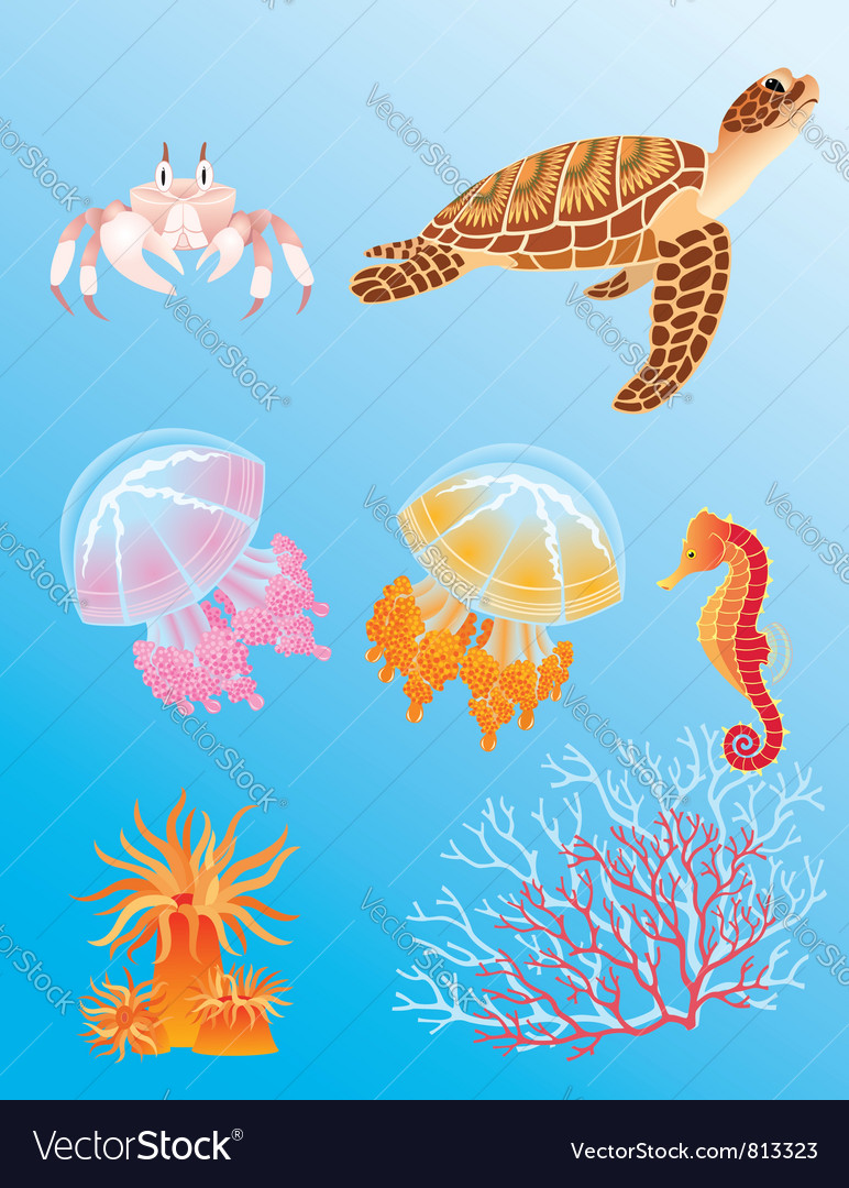 Sea animals vector | Price: 3 Credit (USD $3)