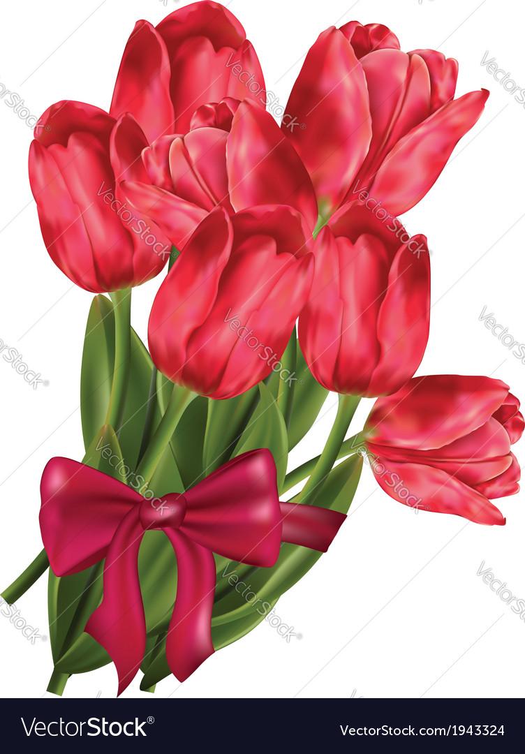 Bouquet of tulips vector   Price: 1 Credit (USD $1)