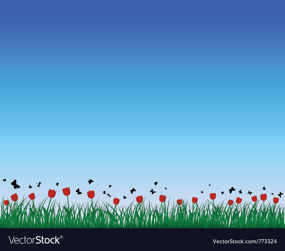 Tulips field background vector | Price: 1 Credit (USD $1)