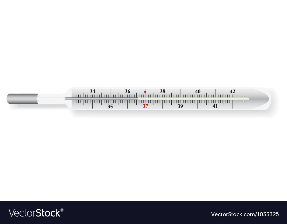 The thermometer vector | Price: 1 Credit (USD $1)