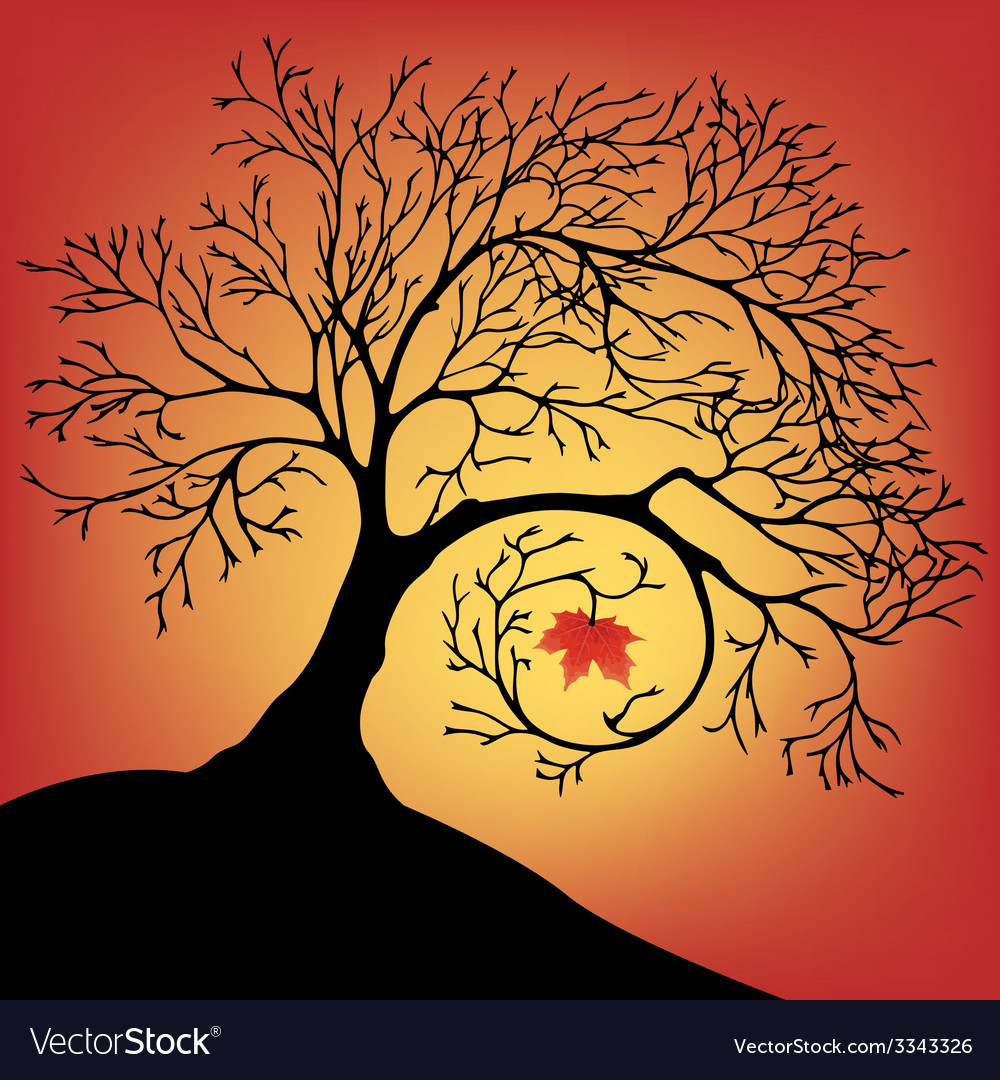The black silhouette of a beautiful big tree with vector | Price: 1 Credit (USD $1)