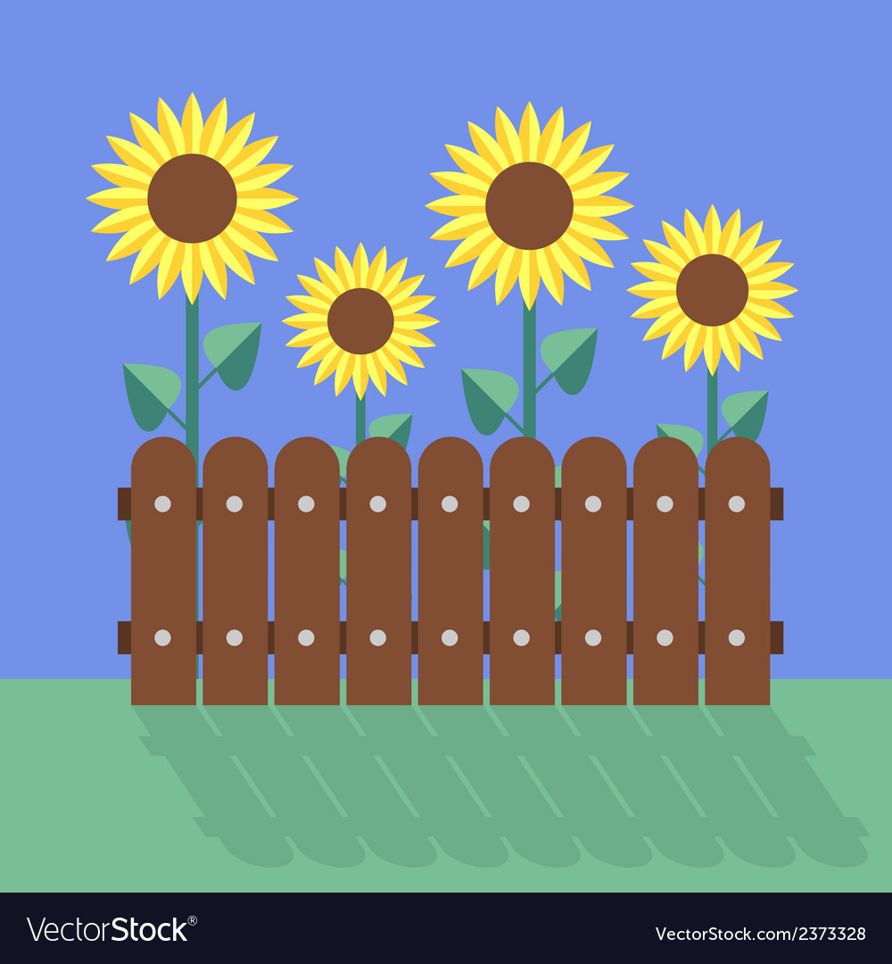 Sunflowers flat design vector | Price: 1 Credit (USD $1)