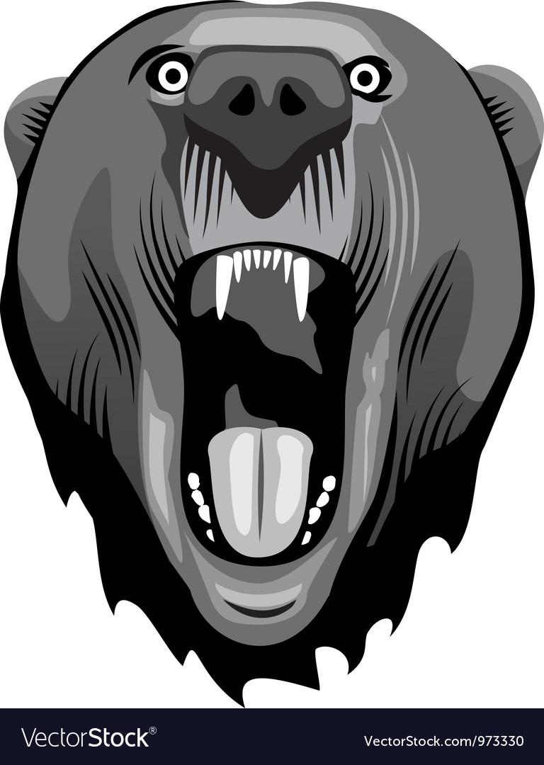 Bear head vector | Price: 1 Credit (USD $1)