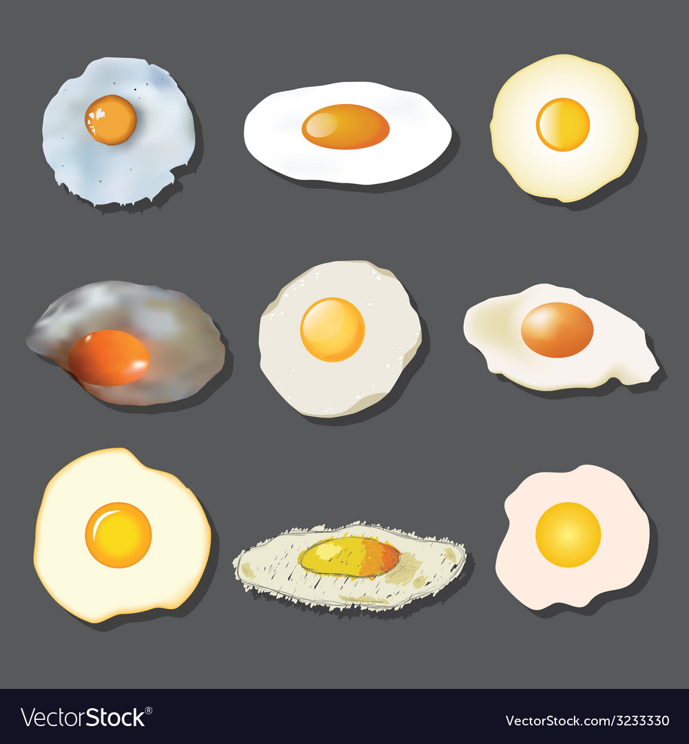 Fried egg collection vector | Price: 1 Credit (USD $1)