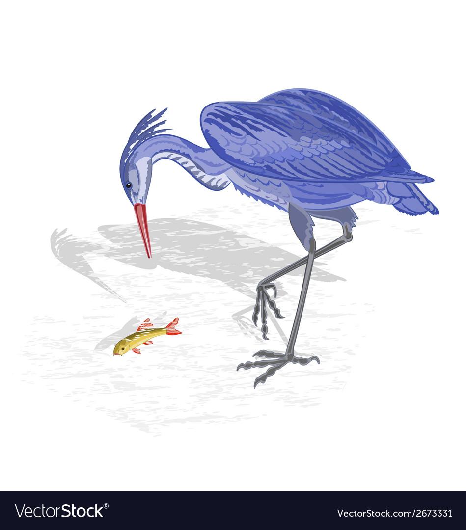 Heron hunting fish vector | Price: 1 Credit (USD $1)