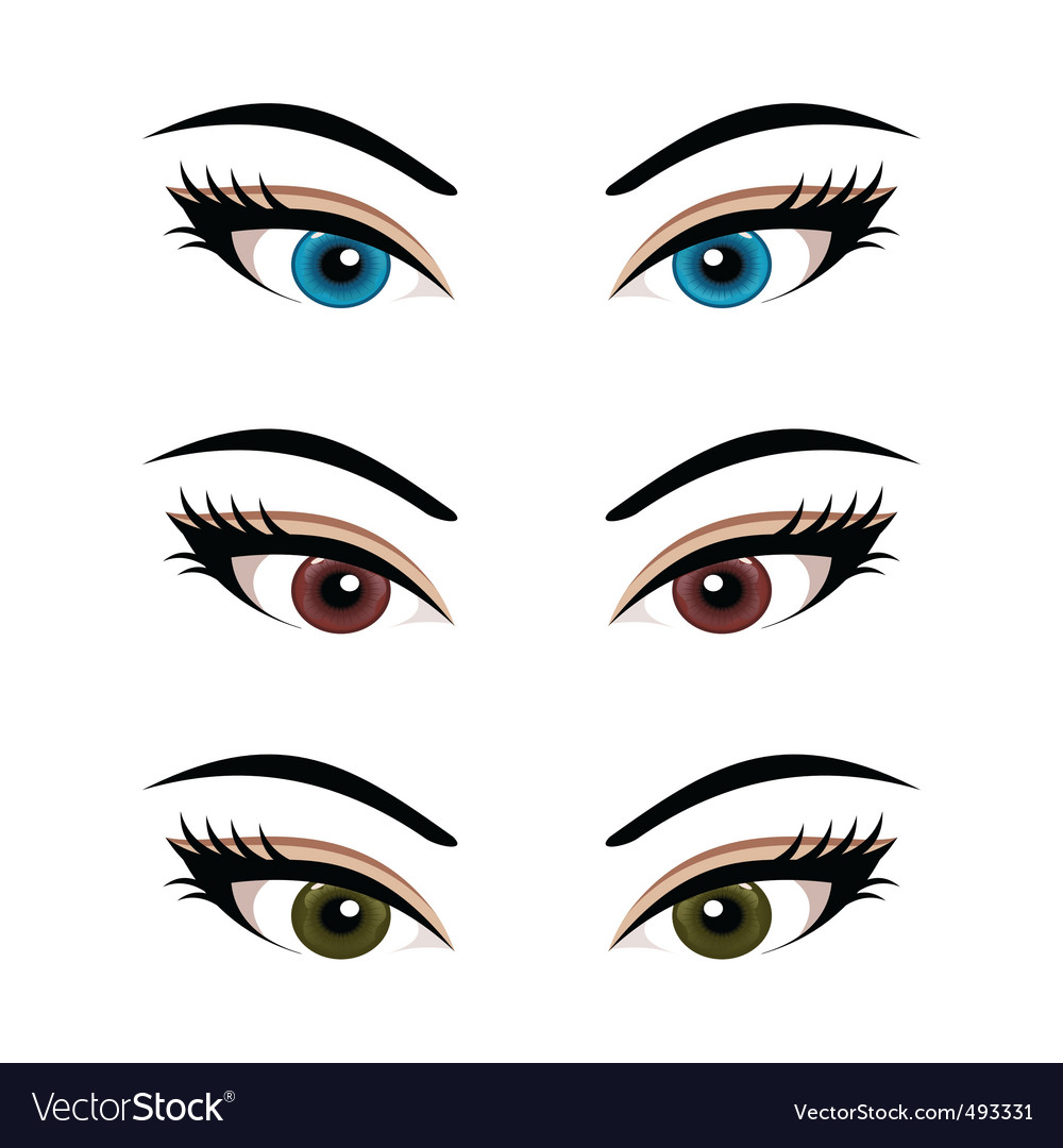 Set female eyes isolated 3 vector | Price: 1 Credit (USD $1)