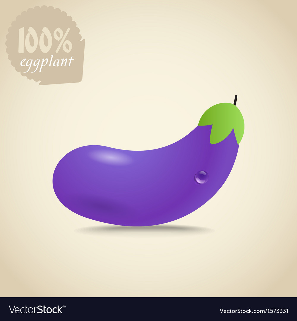 Violet eggplant vector | Price: 1 Credit (USD $1)