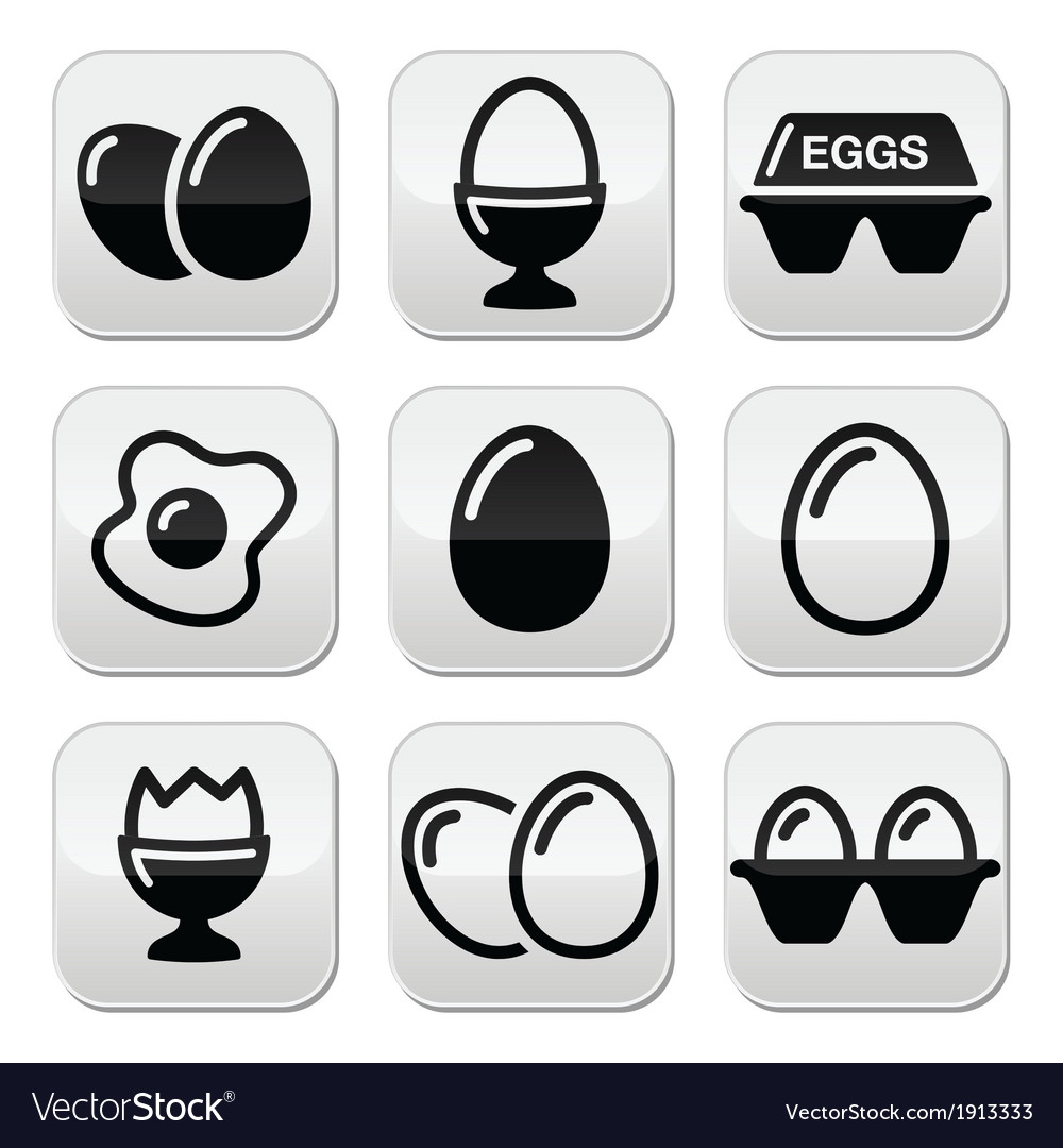 Egg fried egg egg box buttons set vector | Price: 1 Credit (USD $1)