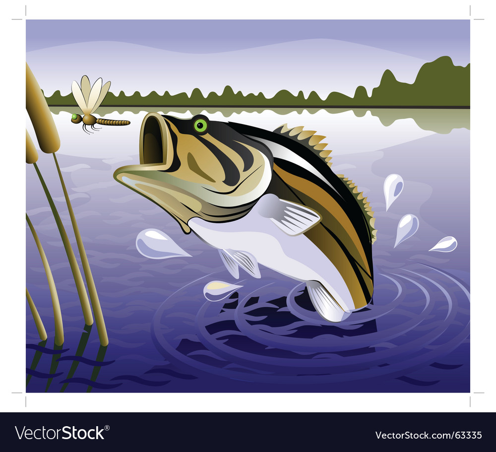 Fresh water fish vector | Price: 3 Credit (USD $3)