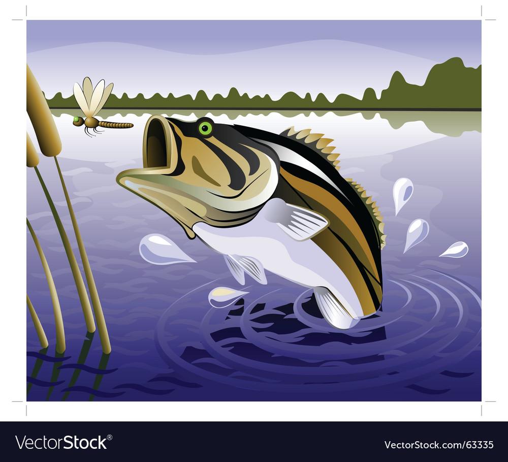 Fresh water fish vector | Price: 3 Credit (USD $3)