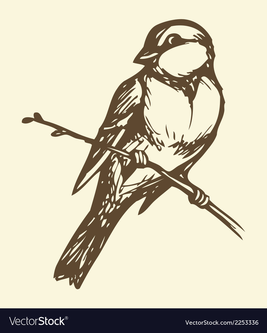 Small titmouse on a branch vector | Price: 1 Credit (USD $1)