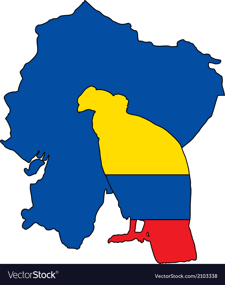 Andean condor ecuador vector | Price: 1 Credit (USD $1)