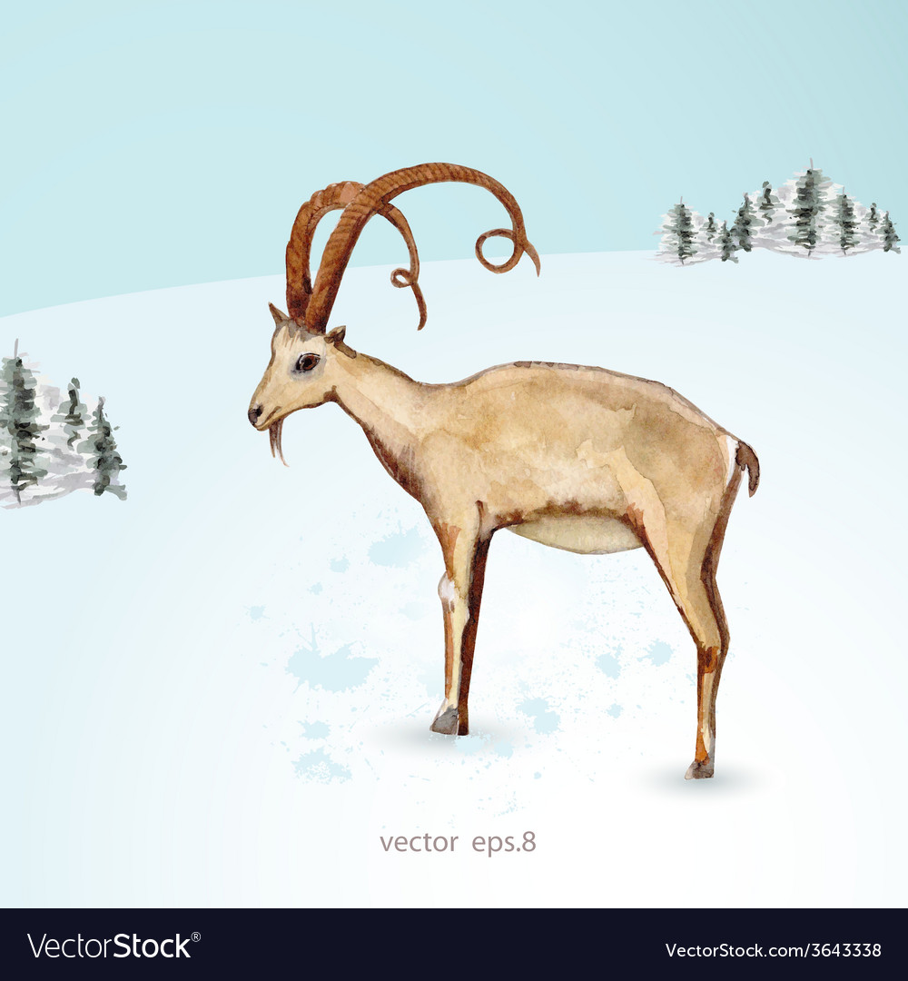 Watercolor painting of goat in winter landscape vector | Price: 1 Credit (USD $1)