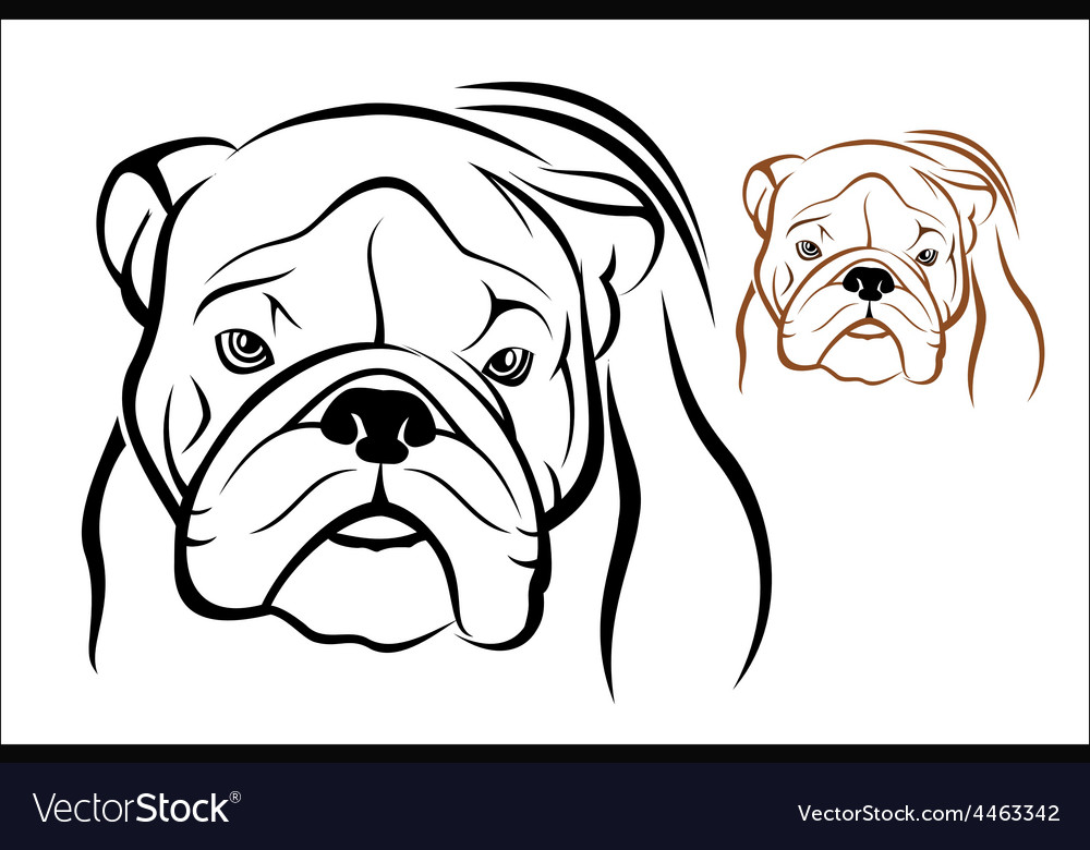 English bulldog 1 vector | Price: 1 Credit (USD $1)