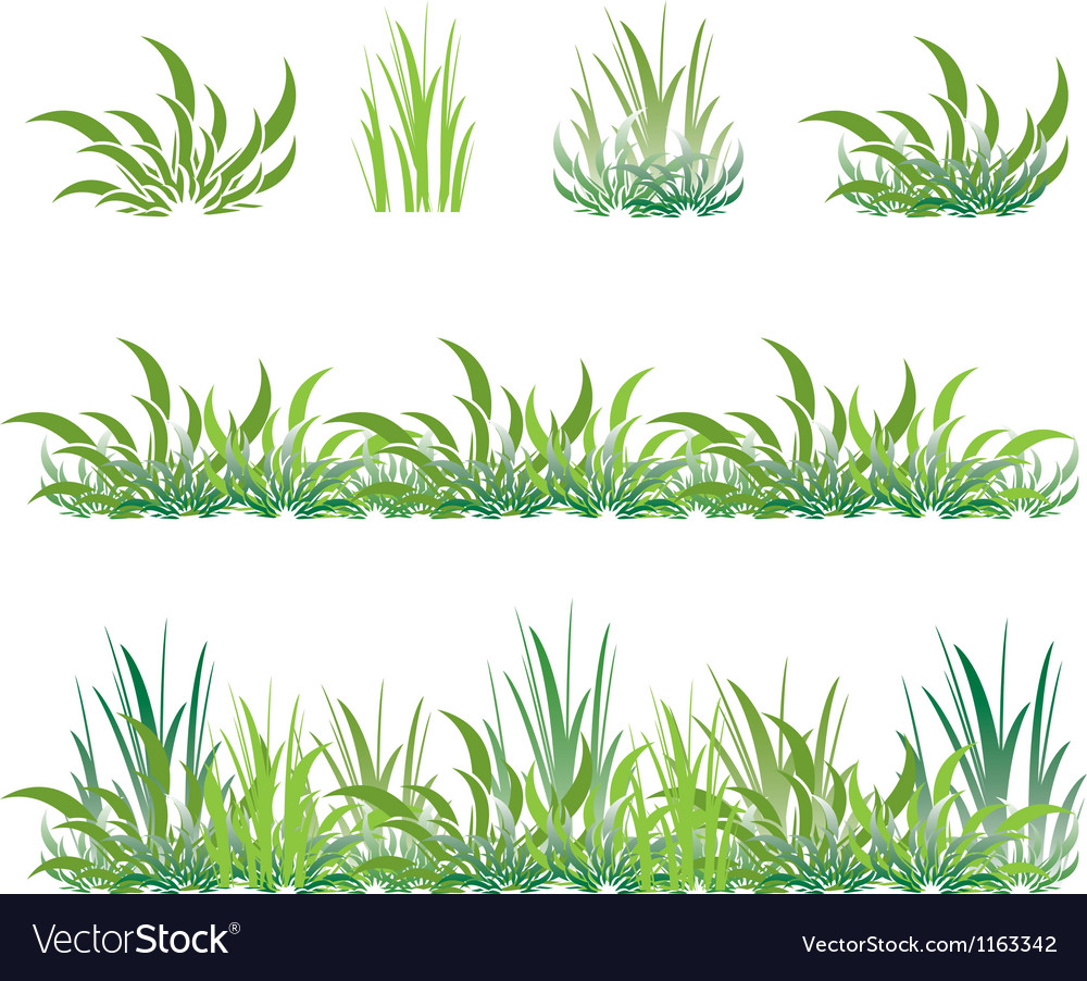 Set of green grass vector | Price: 1 Credit (USD $1)