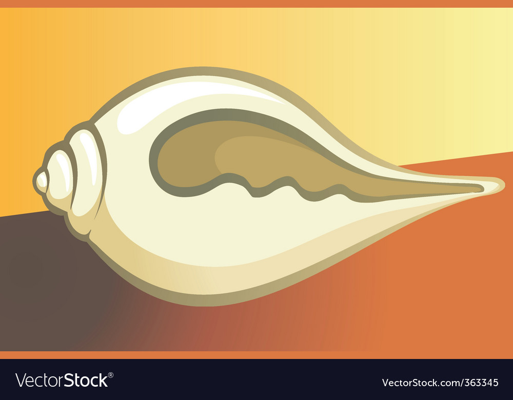 Shell vector   Price: 1 Credit (USD $1)