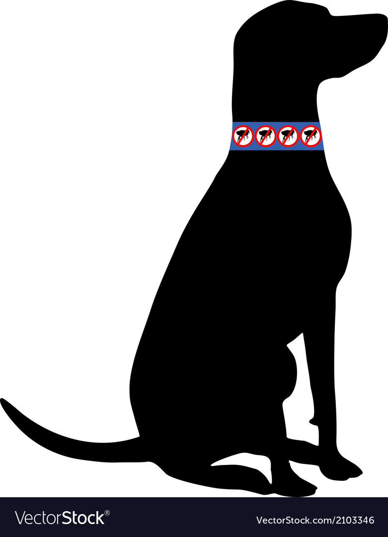 Dog with flea collar vector | Price: 1 Credit (USD $1)