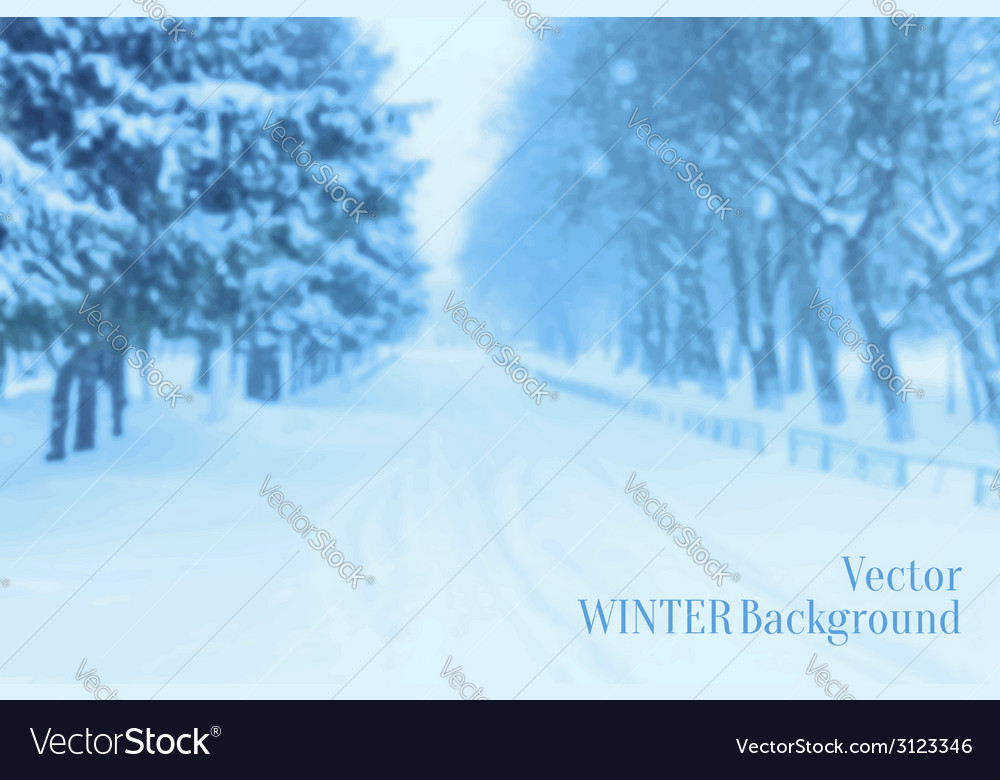 Winter blurred background vector | Price: 1 Credit (USD $1)