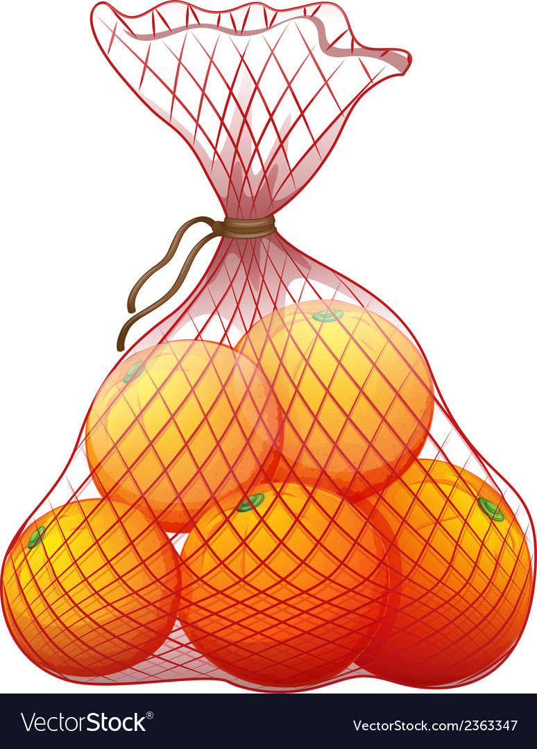 A pack of ripe oranges vector | Price: 1 Credit (USD $1)
