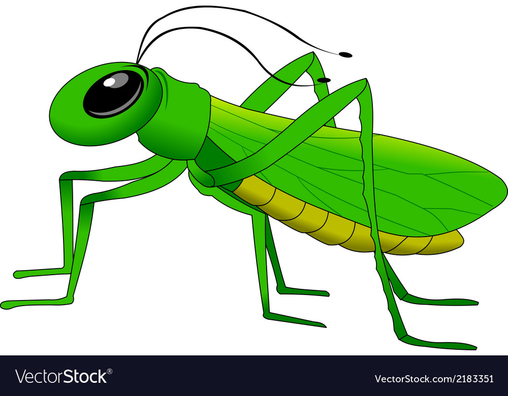 Cartoon grasshopper vector | Price: 1 Credit (USD $1)