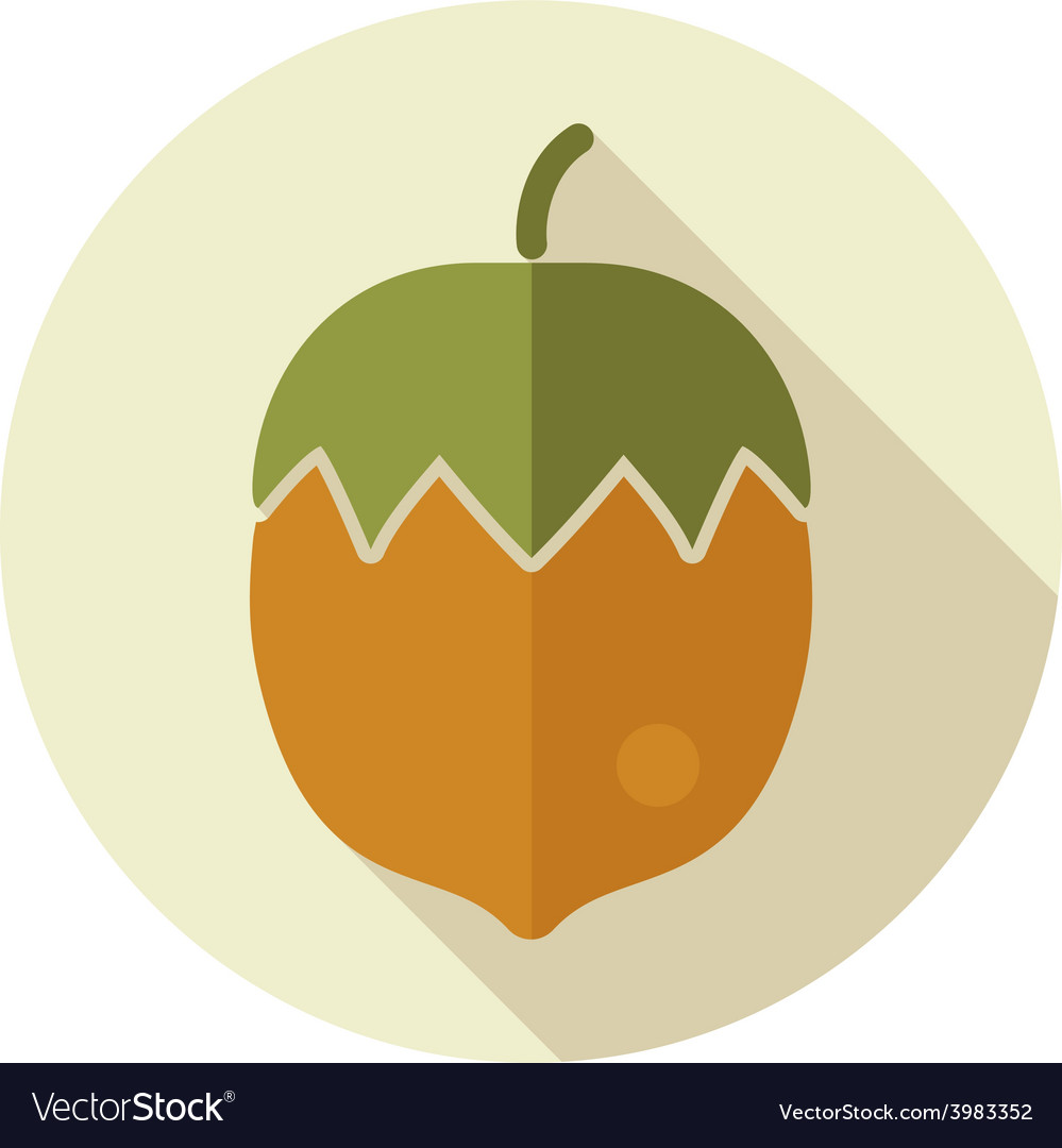 Nut flat icon with long shadow vector | Price: 1 Credit (USD $1)