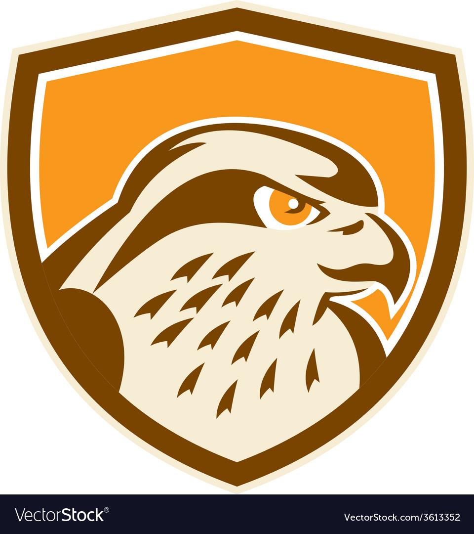 Peregrine falcon head shield retro vector | Price: 1 Credit (USD $1)