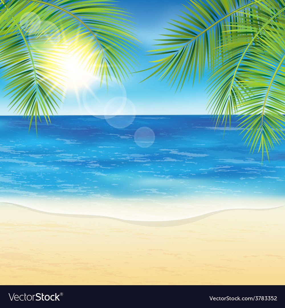 Sand beach and the palm branches at sunset time vector | Price: 3 Credit (USD $3)