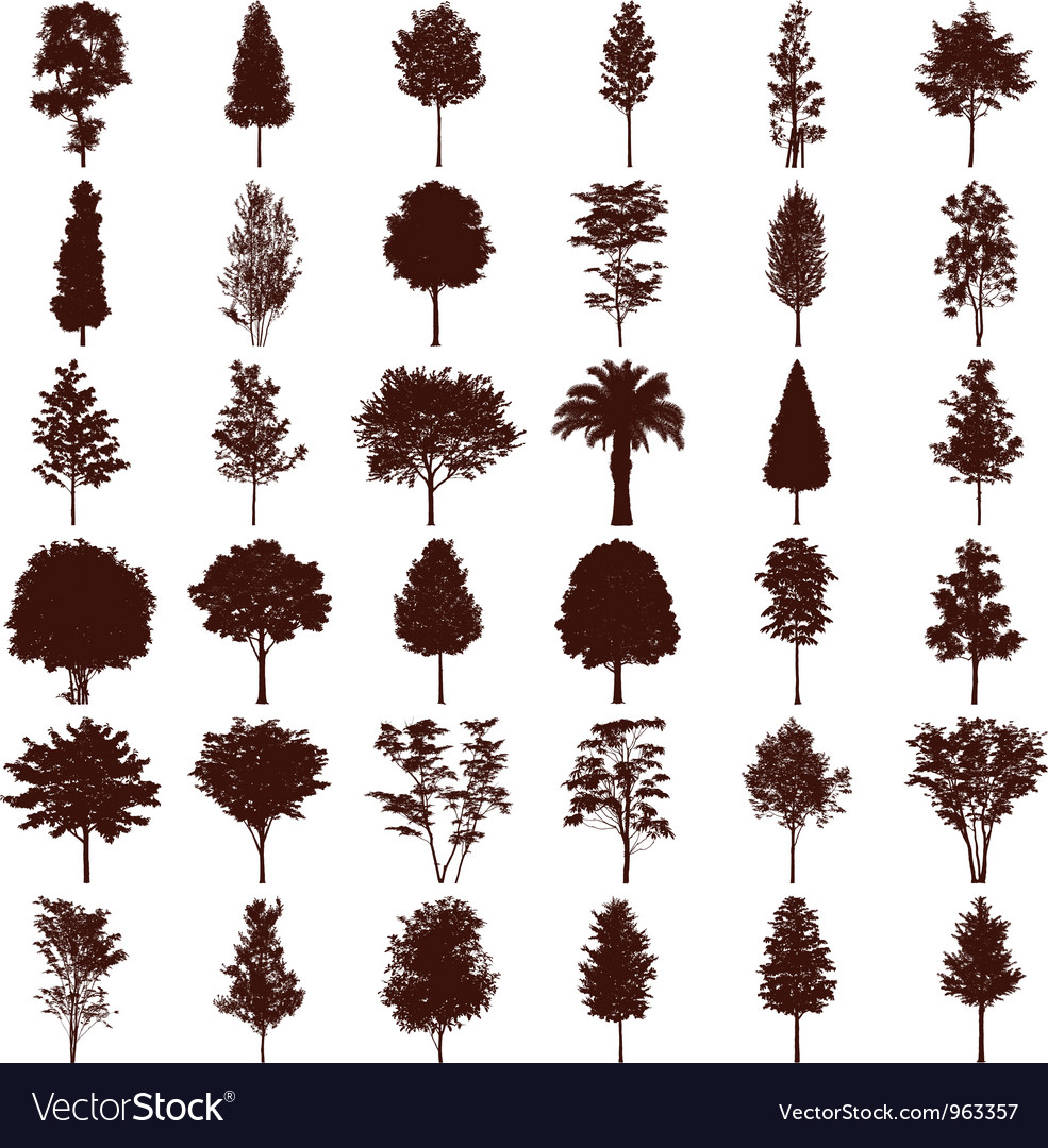 Trees silhouettes set vector | Price: 1 Credit (USD $1)