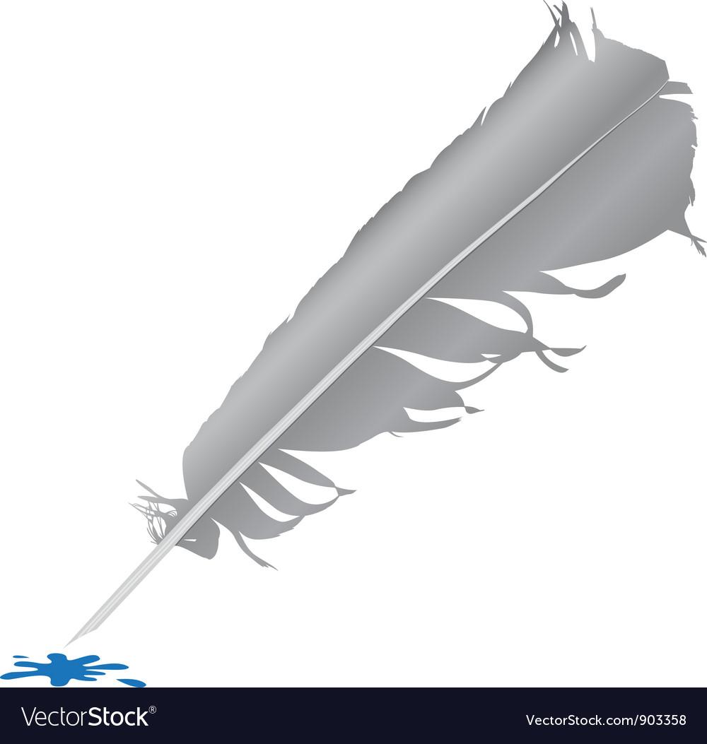 Bird feather vector   Price: 1 Credit (USD $1)