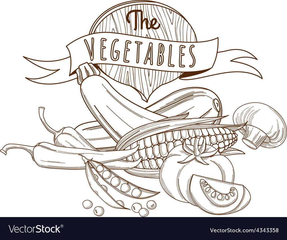 Outline hand drawn sketch vegetable still life vector | Price: 1 Credit (USD $1)