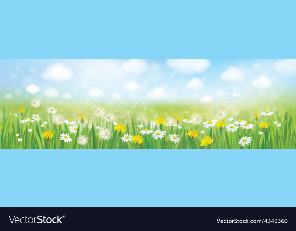 Spring field landscape vector | Price: 1 Credit (USD $1)