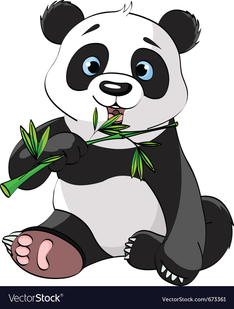 Baby panda sitting and munching on bamboo vector | Price: 3 Credit (USD $3)