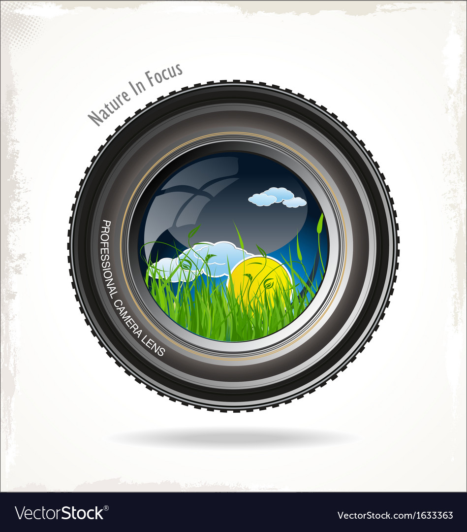 Nature in focus background vector | Price: 1 Credit (USD $1)