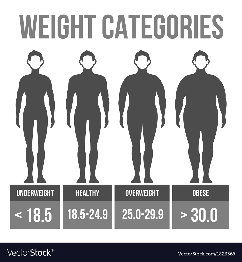 Man body mass index vector | Price: 1 Credit (USD $1)