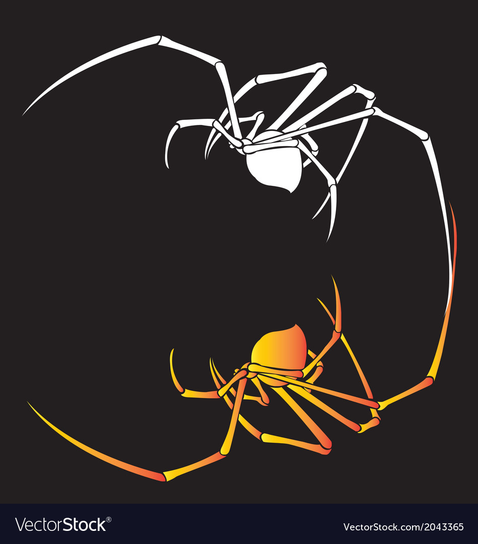 Spider tattoo for back on white background vector | Price: 1 Credit (USD $1)