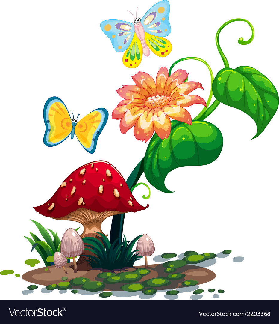 A big flower near the mushroom with two vector | Price: 1 Credit (USD $1)