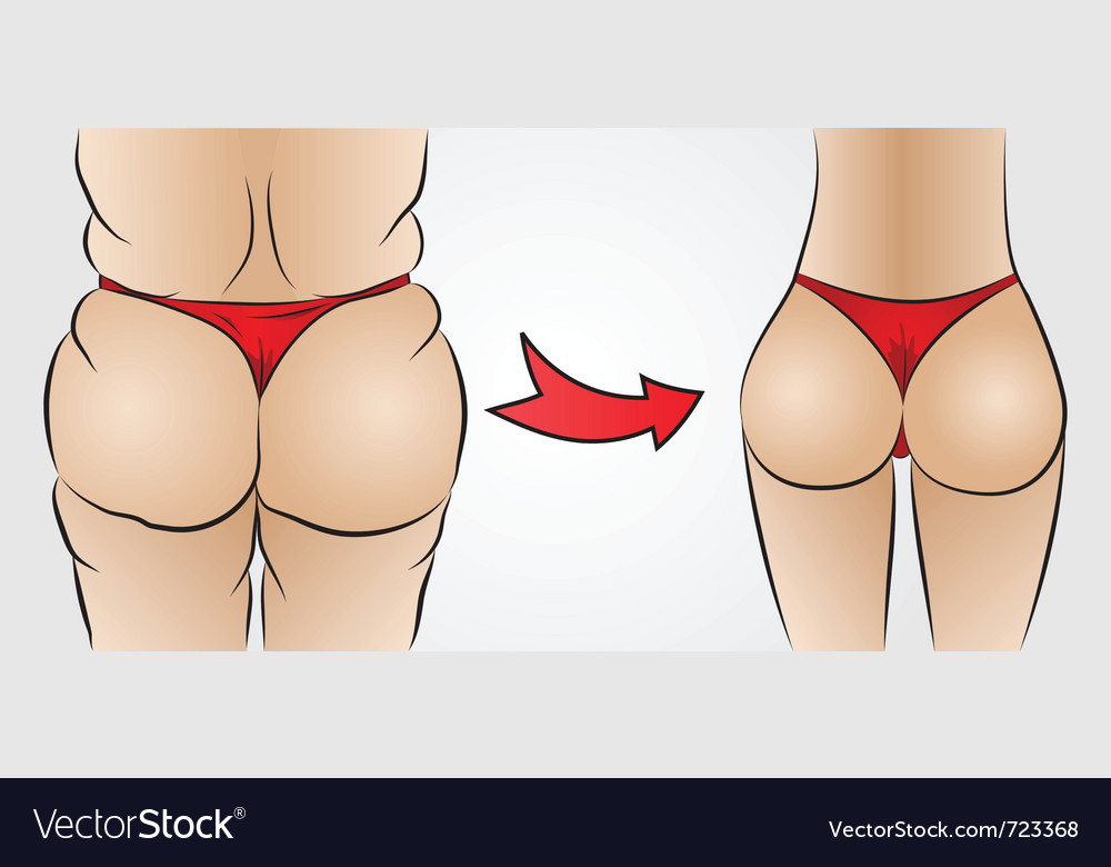 Fat ass and slim ass vector | Price: 1 Credit (USD $1)