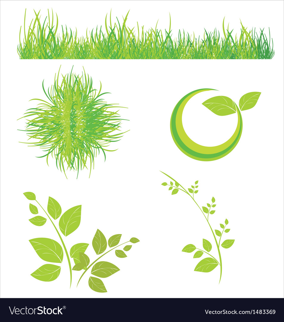 Floral icons of grass and leaves vector | Price: 1 Credit (USD $1)