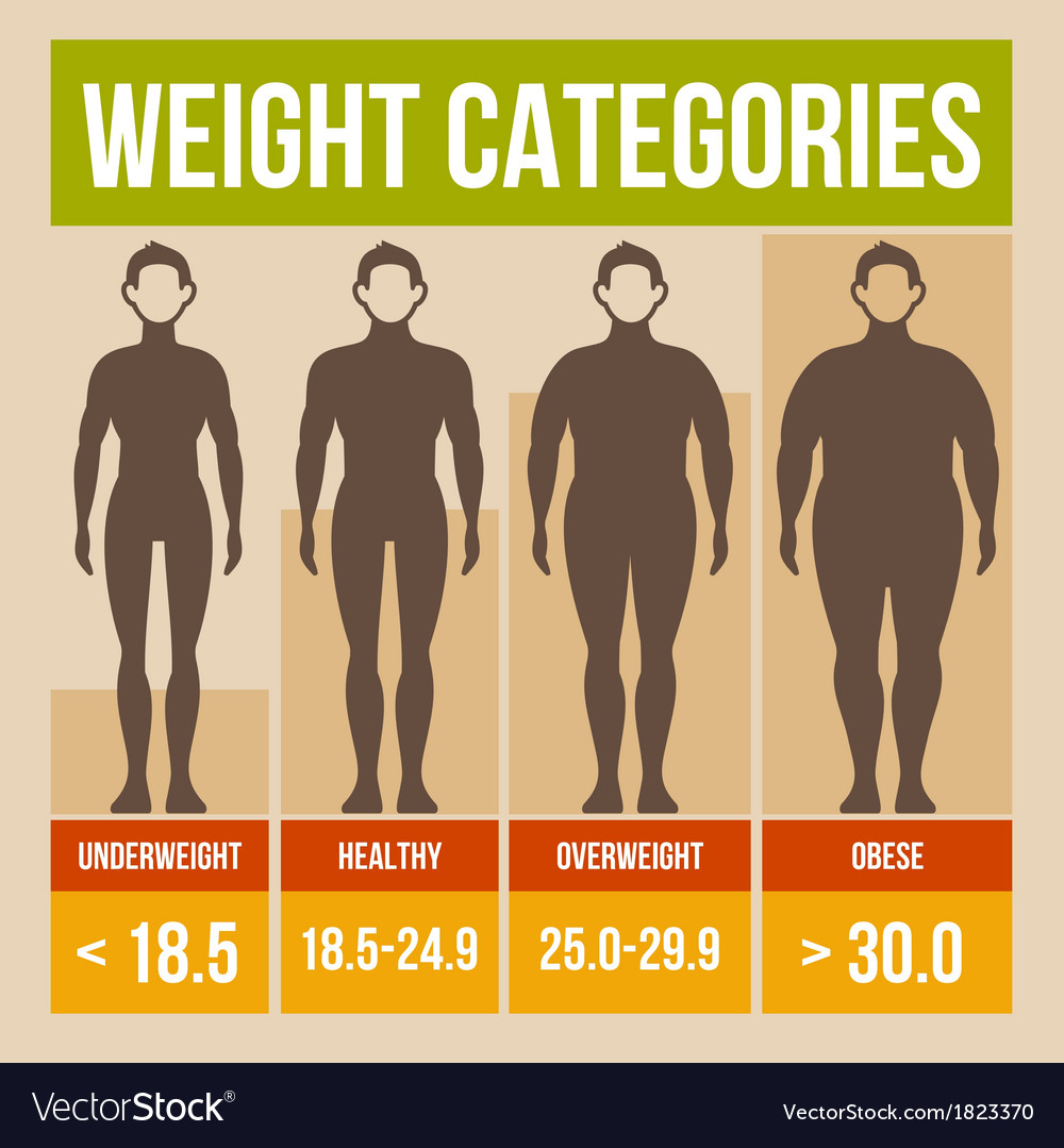 Body mass index retro poster vector | Price: 1 Credit (USD $1)