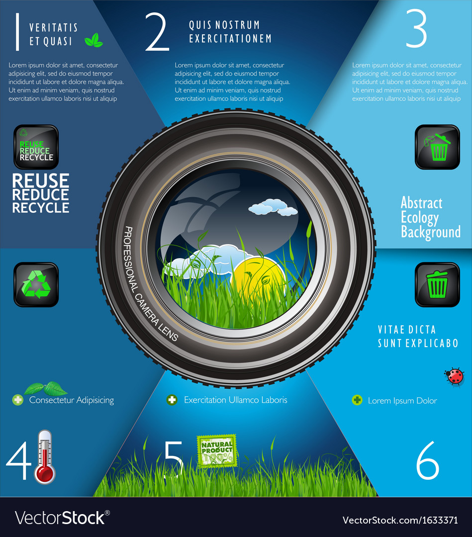 Nature in focus infographic vector | Price: 1 Credit (USD $1)