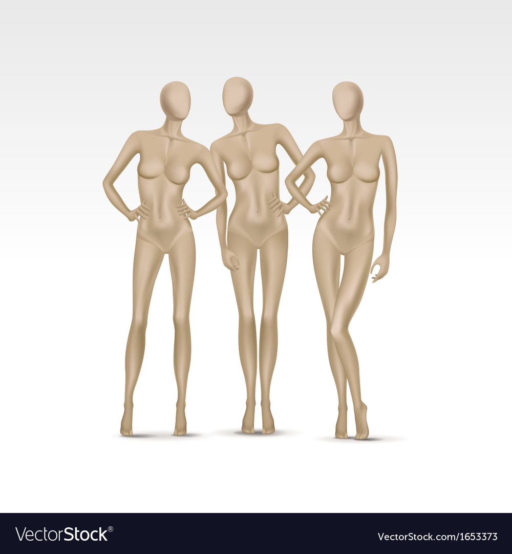 Set of isolated female mannequins vector | Price: 1 Credit (USD $1)