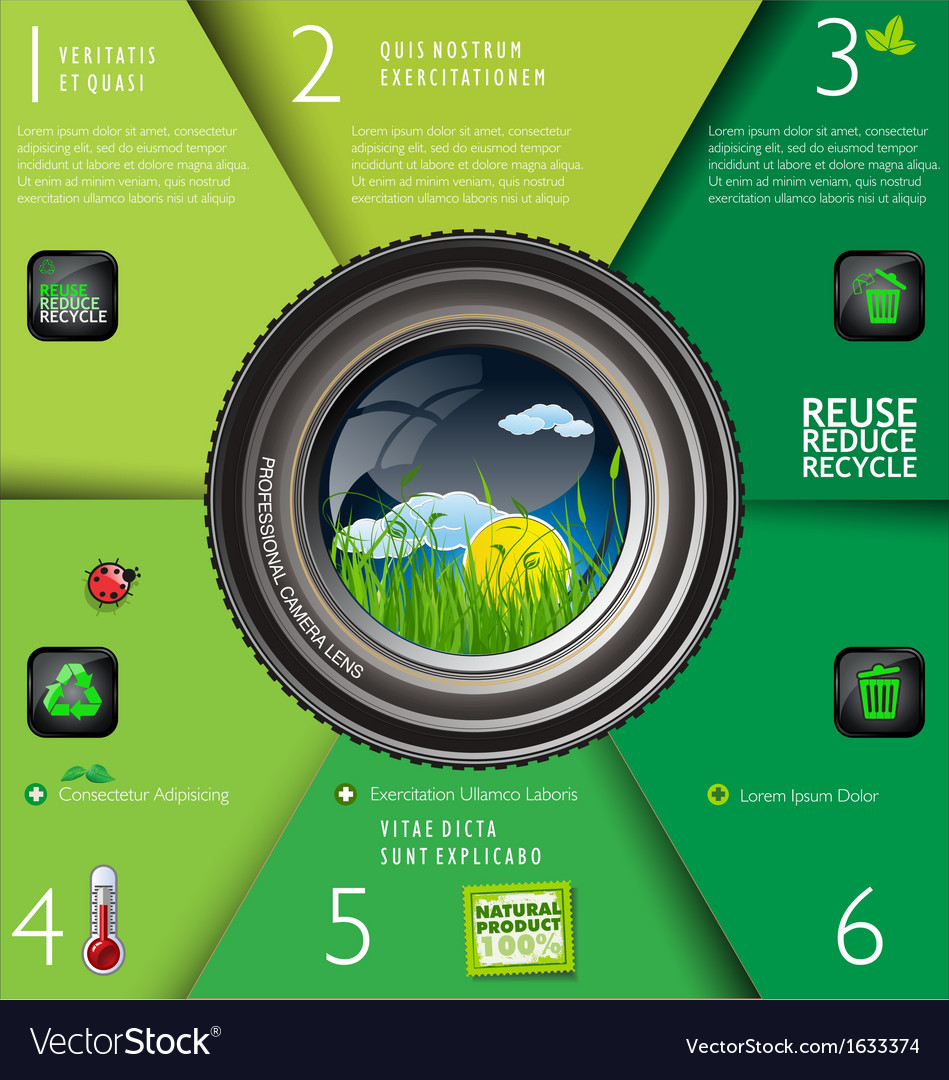 Nature in focus green infographic vector | Price: 1 Credit (USD $1)