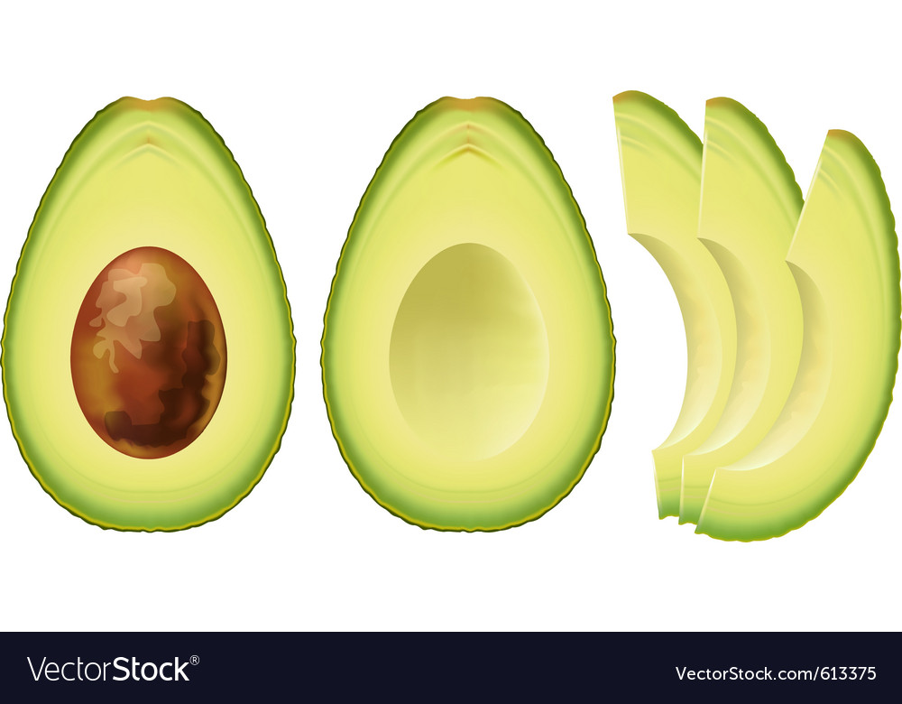 Avocado half of the fruit and cut into slices vector | Price: 1 Credit (USD $1)
