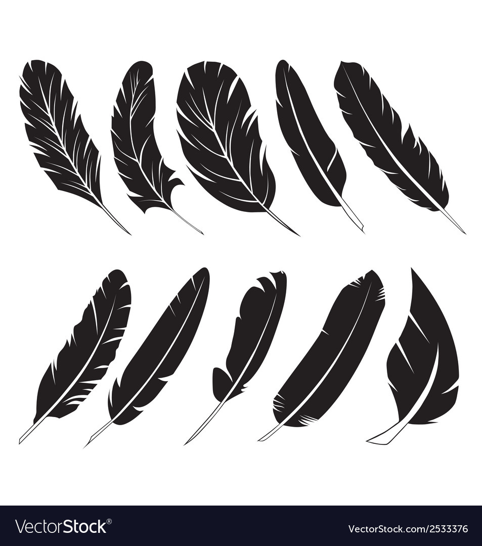 Feather silhouettes vector   Price: 1 Credit (USD $1)