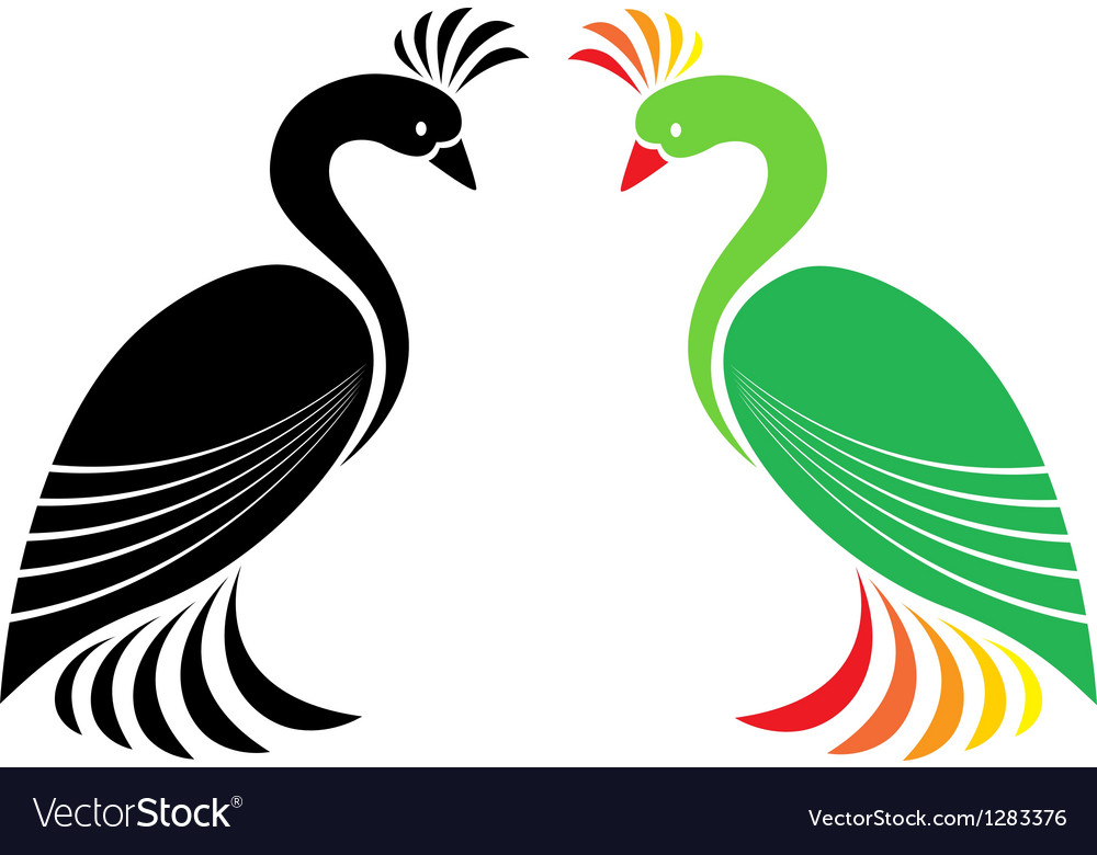 Peacock vector | Price: 1 Credit (USD $1)