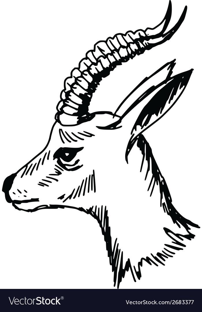 Antelope vector | Price: 1 Credit (USD $1)
