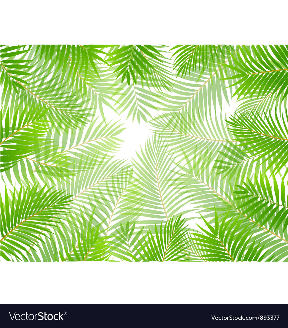 Palm leaf background vector | Price: 1 Credit (USD $1)